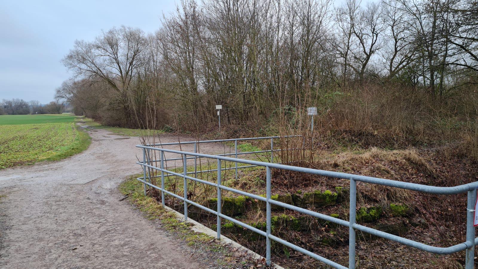 Treffpunkt: Parkplatz Ost-Ufer Epple-See Hirschau